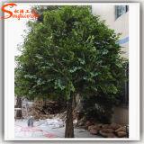 Fabricant de Guangzhou à bas prix de gros arbre artificiel Ficus plante