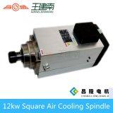 Motore asincrono a tre fasi ad alta velocità dell'asse di rotazione raffreddato aria quadrata di fabbricazione 12kw per il router di scultura di legno di CNC