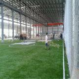 低価格の最もよいデザインの鋼鉄構造屋内フットボールのサッカーの建物