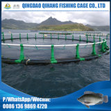 Aquiculture anti-encrassement cultivant la cage de filet de pêche