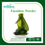자연적인 해초 추출 Fucoidan 90%