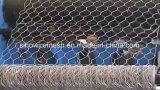 Reticolato esagonale della rete metallica del PVC del rullo