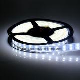 12V doppia striscia impermeabile di riga 5050 LED per illuminazione dell'automobile