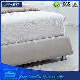 현대 디자인 중국에서 이용된 침대 프레임