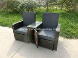 غاز [ركلينر] تخزين ثبت أريكة مع كرسيّ مختبر [رتّن] أثاث لازم