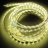 C.C 12V/24V flexible de la bande 60LEDs/M d'éclairage LED de la qualité SMD2835