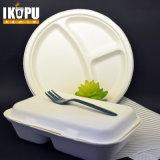 Casella di pranzo di bambù a gettare biodegradabile della polpa