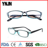 Ynjn propri blocco per grafici di Eyewear del commercio all'ingrosso di alta qualità di disegno (YJ-27874)