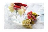 Qualitäts-Acrylplastikwannen für Blumen