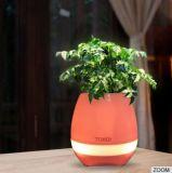 Nuovo Bluetooth POT di fiore astuto di musica di 2017 con l'indicatore luminoso del LED