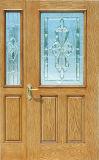 Fabricant Dernier Design FRP Skin Door