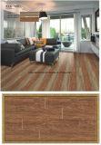 El múltiplo del material de construcción modela el azulejo de madera