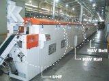 고무 마이크로파 밀어남 기계, 오븐, 기계를 만드는 고무 밀봉 지구를 치료하는 HAV 열기