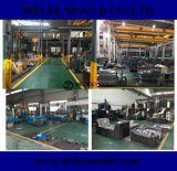 Fornitore della Cina di muffa di plastica