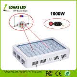 Wasserkultur-LED Pflanze des LED-Pflanzenlicht-300W 450W 600W 800W 900W 1000W 1200W vollen des Spektrum-wachsen Licht