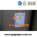 Unbeschichtetes leichtes überzogenes Papier in der Bandspule für Katalog-Drucken