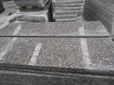 Pietra per lastricati di vendita della decorazione del pavimento materiale caldo del granito G664