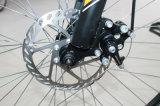 26 bicicletta della montagna di velocità di Pama 21