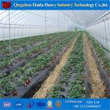 Serra idroponica del traforo della serra del film di materia plastica del pomodoro della serra della Cina