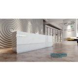 Vinile /WPC di pavimentazione dell'interno Wallcovering del pavimento/WPC di scatto di WPC