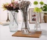 Un style simple vase en verre de fleur, façonné à la verrerie de bouteille transparente