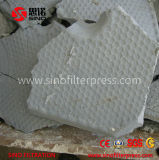 Filtre-presse automatique pharmaceutique de traitement des eaux résiduaires pour la machine de asséchage