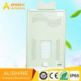 옥외 도로 LED 점화 공장 생활 Po 4 건전지를 가진 최신 판매 태양 거리 LED 빛