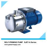 Garten-selbstansaugende Strahlen-Wasser-Pumpe