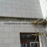 De Chinese Tegel van het Graniet G606 voor de Bouw van Muur