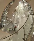 Corrimano di vetro della balaustra dell'inferriata dell'acciaio inossidabile