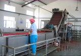 Canne à sucre de machine de jus d'orange d'extracteur de jus de jus de bouteille de jus de machine de jus de canne à sucre
