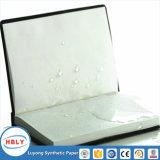 Taccuino di carta di pietra impermeabile Non-Tearable
