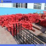 Levage matériel de double de cage gerbeur de construction (SS100/100)
