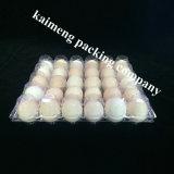 처분할 수 있는 공간 PVC 닭 계란 포장을%s 기계를 만드는 플라스틱 계란 쟁반