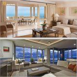 최신 Windows와 문을%s 가진 판매 바람 저항에 의하여 조립식으로 만들어지는 호화스러운 집