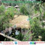 Tiki 바를 위한 자연적인 보기 종려 합성 이엉 또는 Tiki 오두막 합성 지붕을 짚으로 인 초막 물 방갈로 비치 파라솔 25
