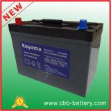 12V 100ah tiefe Schleife-Gel-Batterie für entspannendes Fahrzeug