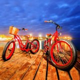 bici eléctrica de la playa de 26inch 500W