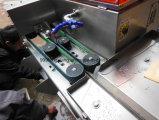 Máquina que corta de los pescados automáticos Fgb-168, sardina/máquina que corta de color salmón, pescado que separa la máquina