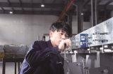 Vidrio de Jinglass que templa la máquina de proceso