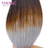 Recto natural del pelo camboyano de Ombre 1b/Grey del precio de fábrica