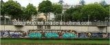 Aeropak colorida Pintura Graffiti