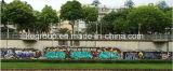 Verf van de Nevel Graffiti van Aeropak de Kleurrijke