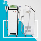 Máquina al por mayor de la belleza de Cryotherapy con el mejor eficaz