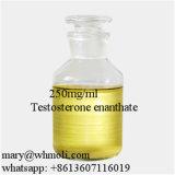 Grande testostérone injectable Enanthate de la pureté 250mg/Ml pour le culturisme