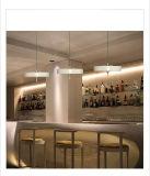 Großhandelslieferanten-zeitgenössische einfache Art-Lampen-hängende Aluminiumbeleuchtung