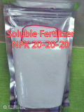 Soluble dans l'eau de l'engrais NPK 20-20-20 composé d'engrais NPK