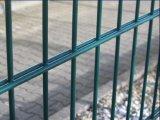 Cerca de alambre doble plana revestida del PVC de la alta calidad para el jardín