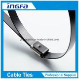 スプレーのセリウムRoHSが付いているプラスチックステンレス鋼ケーブルのタイ