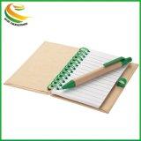 Freundliches Eco bereiten PapierBallpen für förderndes auf